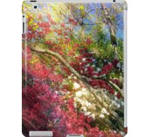 Spring Rush iPad Case/Skin