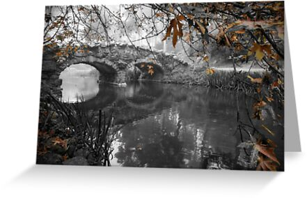 Stow Lake Bridge in Fall by Richard Mason