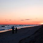 Into the Sunset by Sandy Woolard