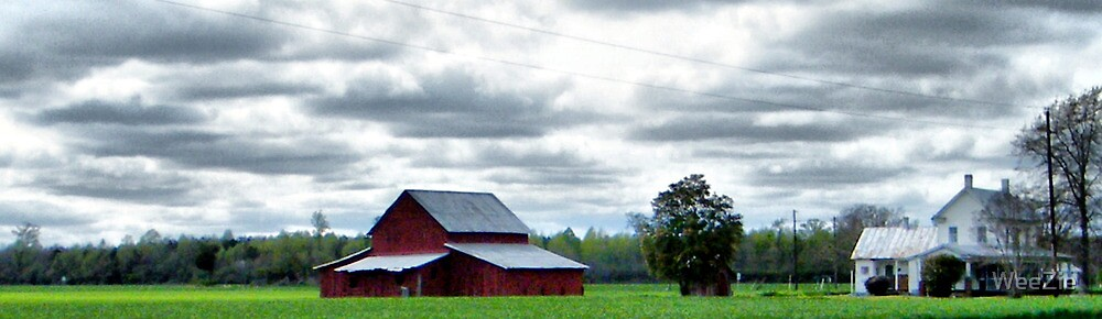 Rural Perquimans County by WeeZie