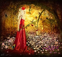 Lady in Red by Svetlana Sewell