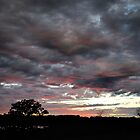 Foreboding Pink by Mully410