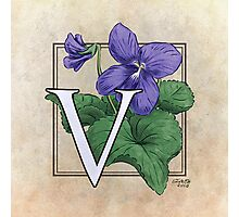 V is for Violet Photographic Print