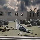 OPEN BIRD CAGING by Paul Quixote Alleyne