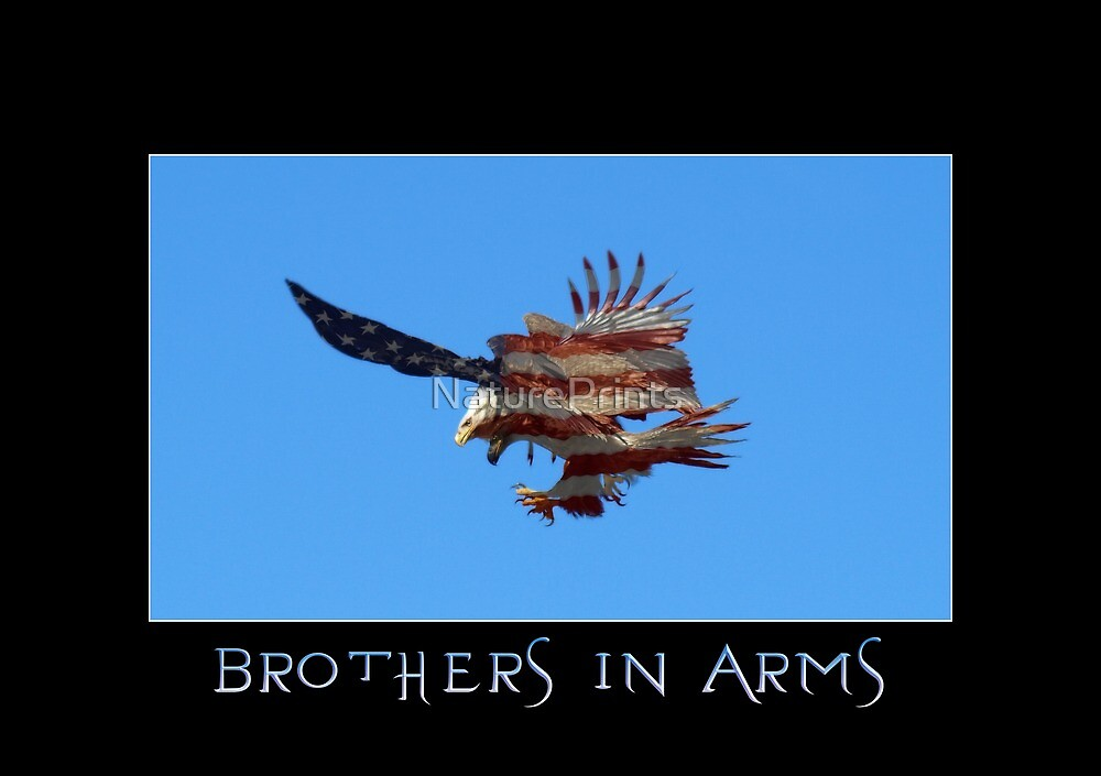 """Brothers in Arms"" Patriotic Poster  by NaturePrints"