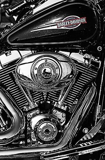Chrome Harley by Don Alexander Lumsden (Echo7)