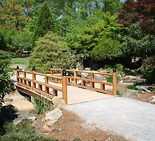Japanese Garden by DebbieCHayes