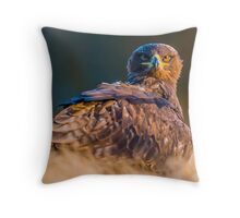 Bird of Prey - Steppe Eagle Throw Pillow