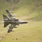 Warton Tornado GR4 ZG773 makes a low pass of CAD West by Peter Talbot