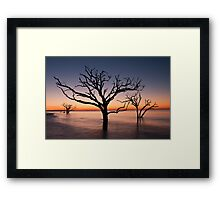 Bone Yard at Dawn Framed Print