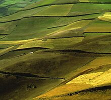 Fields in the Andes by cclaude