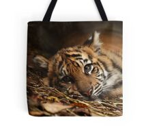 Baby Tiger - Model Tote Bag