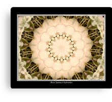 White Hydrangea Kaleidoscope #1 Canvas Print