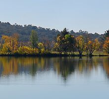 Island on Lake Burley Griffith, Canberra by raoulphoto