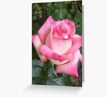 Pink Icing Greeting Card