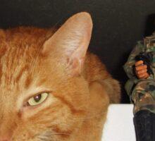 Frankie & Sgt. Major Joe Sticker