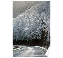 Wintry Road Poster