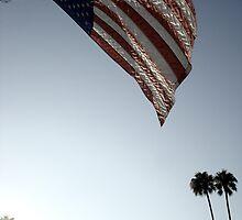 Stars and Stripes - Burbank, CA by Barnewitz