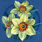 Daffodils - the joys of spring  by Sarah Trett