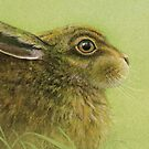 Portrait of a Rabbit by Sarah Trett