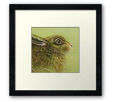Portrait of a Rabbit Framed Print