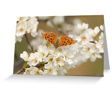 flying freely in the plum tree Greeting Card