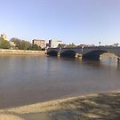 Putney Bridge by Steven Mace