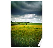 Storm over barley, The Cotswolds, England Poster