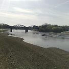Riverside view at Barnes Bridge by Steven Mace