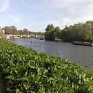 Richmond-upon-Thames by Steven Mace