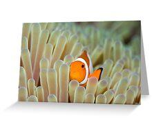 Anemone and Nemoish. Greeting Card