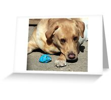 Ho no I have killed my little blue ball Greeting Card
