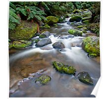 Toorongo River. Noojee. Victoria. Poster