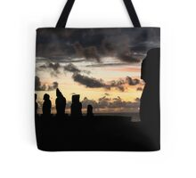 the last sun of 2010 - the guardians  Tote Bag