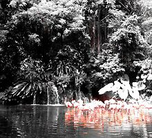 Vintage Flamingo Lake by slkuskopf