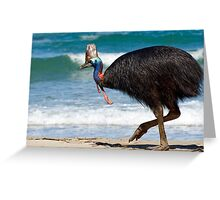 Strolling by - cassowary on the beach Greeting Card