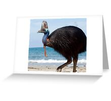 Beach Comber - cassowary at Etty Bay Greeting Card