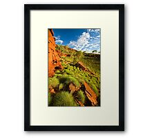 Sunkissed Spinifex Framed Print
