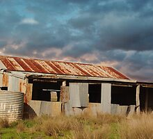 RUSTING WOOLSHED by Helen Akerstrom Photography