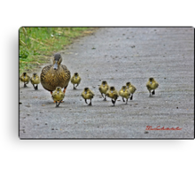 """"""" Come along girls, keep up! Canvas Print"""