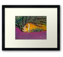 I like my anemone Framed Print
