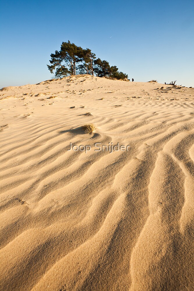 Sahara of Europe by Joop Snijder