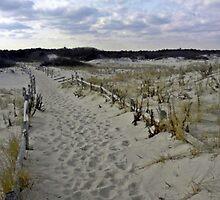 Walk to the Beach by Scott Brookshire
