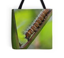 Insect Intersection Tote Bag