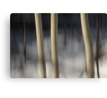 Impression of a Winter Woods Canvas Print