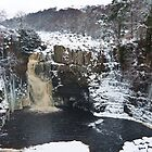 Snowy High Force by herbpayne