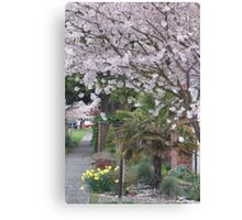 Spring in Crown Hill Canvas Print
