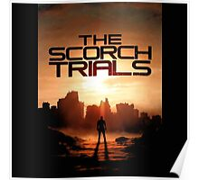 The Maze Runner The Scorch Trials Book Poster