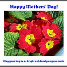 Little Bundles of Sunshine - Mothers' Day Card by BlueMoonRose