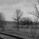Norwood Countryside- B&W Series # 2  by Les Wazny